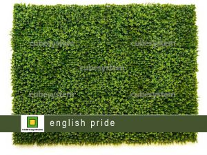 ARTIFICIAL GREENWALL ENGLISH PRIDE BY CUBESYSTEM 300x225 - ARTIFICIAL GREENWALL_ENGLISH PRIDE BY CUBESYSTEM