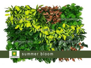ARTIFICIAL GREENWALL SUMMER BLOOM BY CUBESYSTEM 300x225 - ARTIFICIAL GREENWALL_SUMMER BLOOM BY CUBESYSTEM