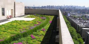 Green Roofs 300x149 - Green-Roofs