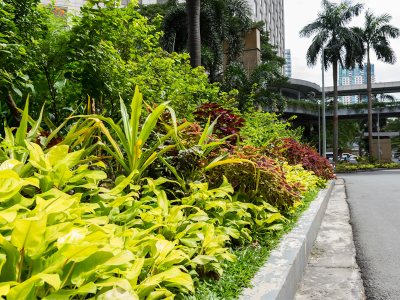 LANDSCAPE CONTRACTING BY CUBESYSTEM - Our Products