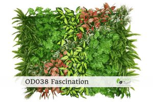 OD038 Outdoor Artificial Green Wall Fascination 1 300x200 - OD038-Outdoor-Artificial-Green-Wall-Fascination