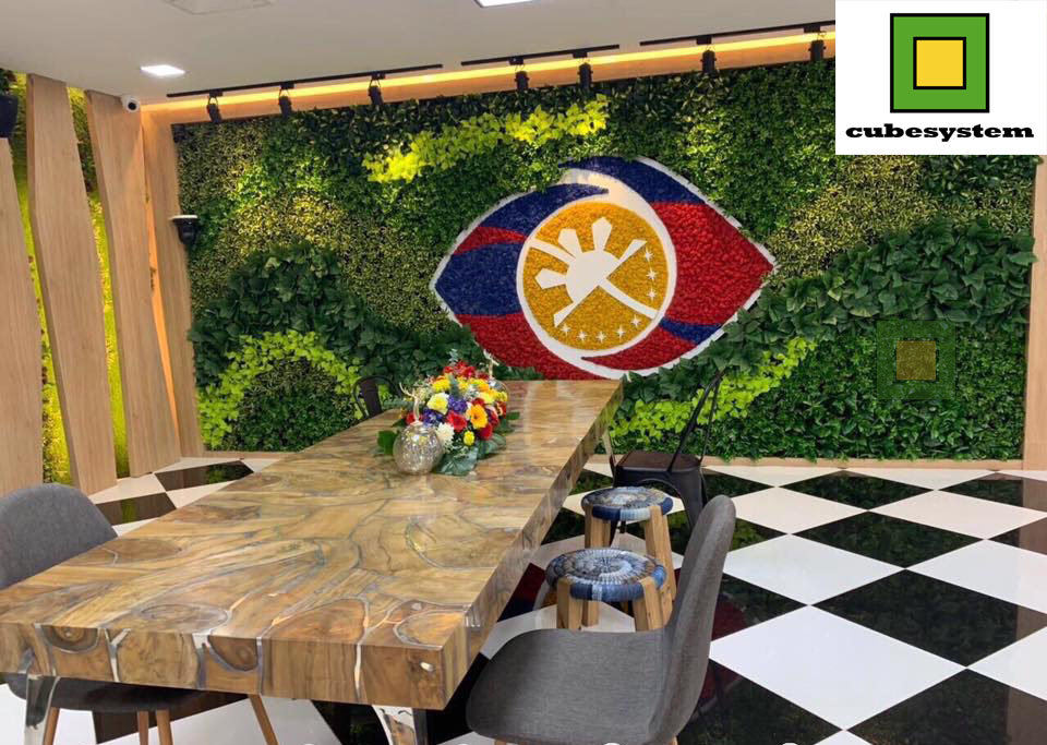 PINOY BIG BROTHER - Recent Projects