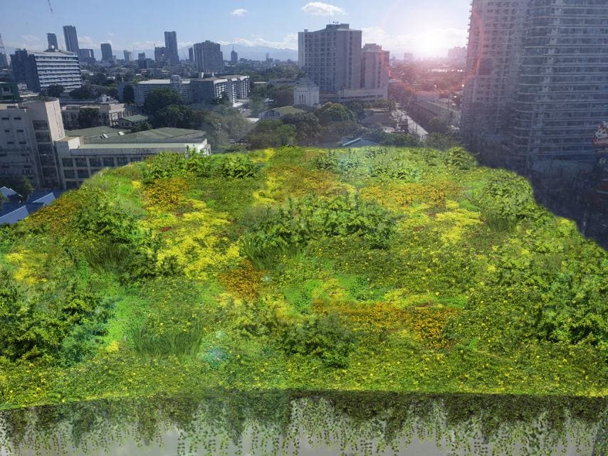 greenroof blog - A Greener view