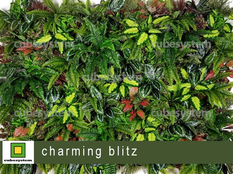 ARTIFICIAL GREENWALL CHARMING BLITZ BY CUBESYSTEM 1 - Artificial Green Wall