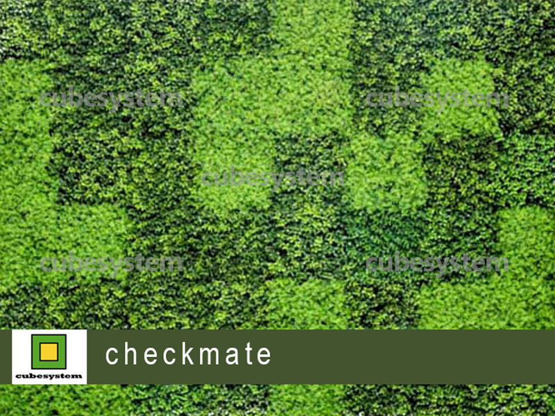 ARTIFICIAL GREENWALL CHECKMATE BY CUBESYSTEM 1 - Artificial Green Wall
