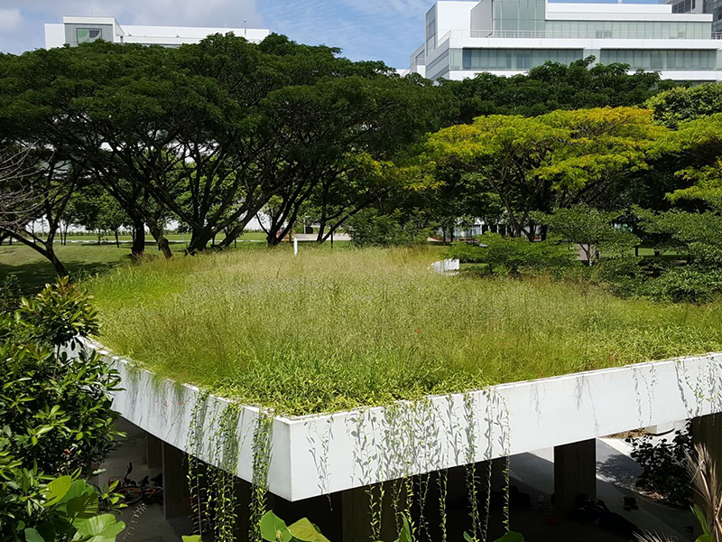 GREENROOF BY CUBESYSTEM - Green roof