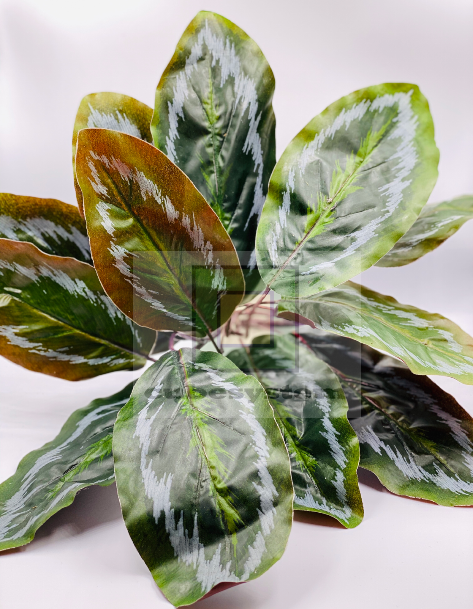 SRE CALATHEA - Artificial Plants
